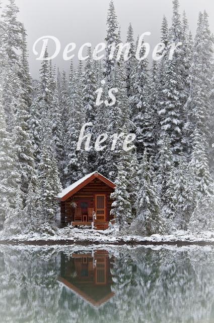 poza de iarna craciun zapada