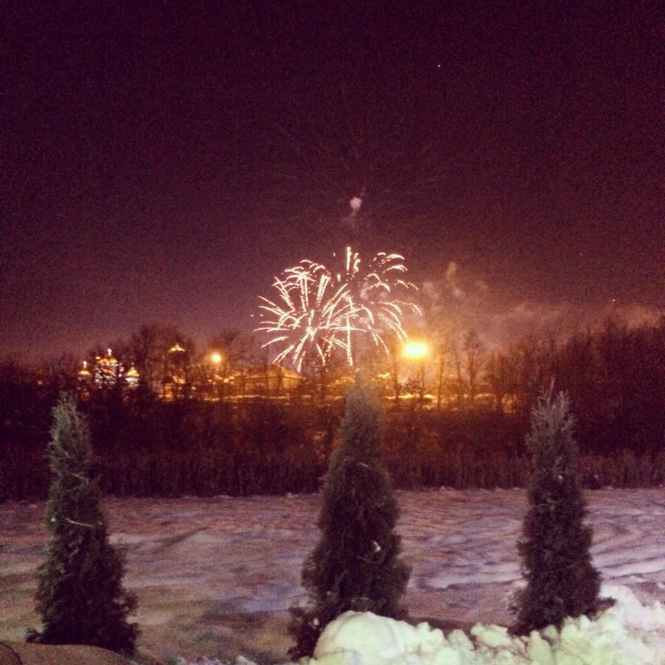 artificii mioveni 2015