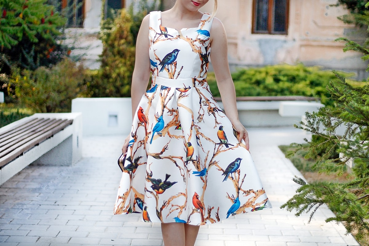 rosewholesale dress, street style, blogger andreea ristea, midi birds print dress