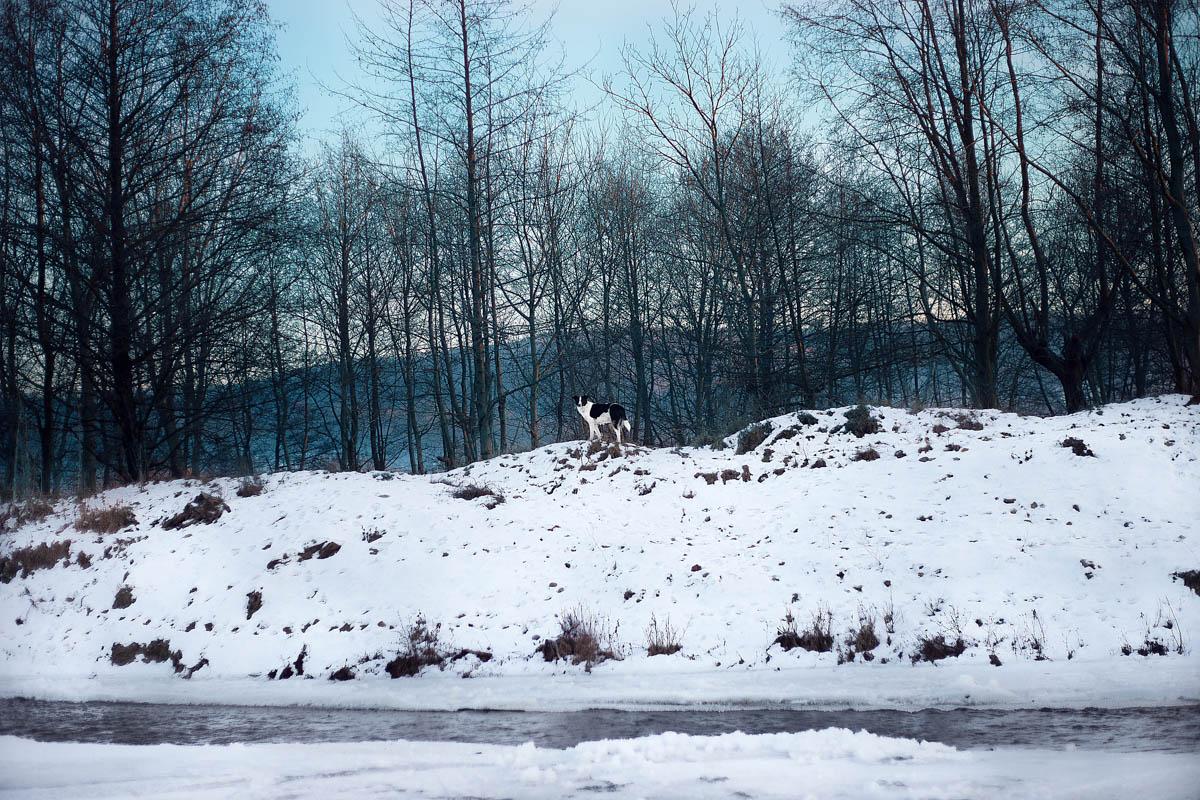 Peisaj de iarna, zapada, fotografie Canon 6D